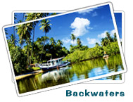 Backwater Stays : Eco Tourism Deals in India
